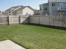 privacy fence with no landscaping