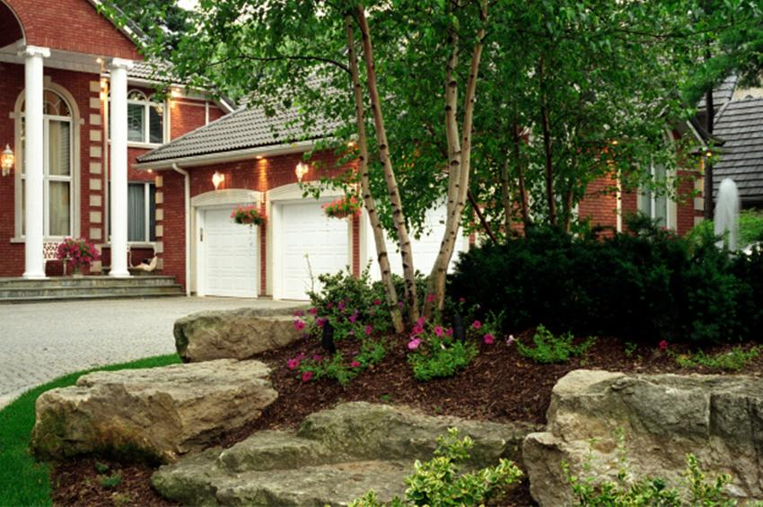 trees and landscaping for curb appeal