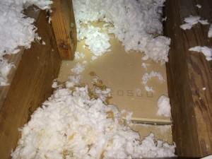 missing attic insulation